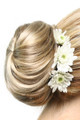 Elegance Formal Affair Hairpiece by easiHair