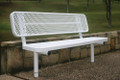 Player's 4' Bench with Back