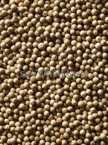 White Pepper Sarawak Cream Label