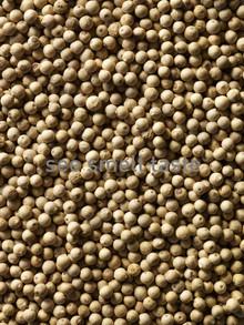 White Pepper Sarawak Cream Label