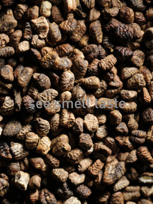 Cardamom Seed Decorticated