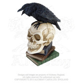 Poes Raven Skull