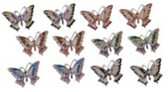 """Set of Twelve Butterfly Magnets, 2""""W GS97706"""