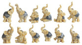 "Elephant Ivory - Set of 12 - 4""H GS49429"