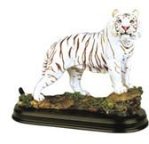 "19718 White Tiger 6"""