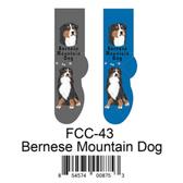 Bernese Mountain Dog Foozys Unisex Dog Socks FCC-43