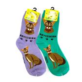 Abyssinian Feline Cat Foozys Socks FFC-01