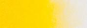 ARA Acrylics - Cadmium Yellow Medium D13