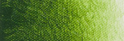 ARA Acrylics - Sap Green Lake Extra C292