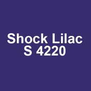 Montana Gold - Shock Lilac