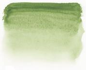 Sennelier Watercolour - Green Earth S1