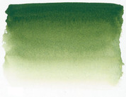 Sennelier Watercolour - Sap Green S1