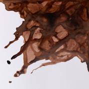 W&N Drawing Ink - Peat Brown