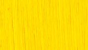 Michael Harding Oil - Cadmium Yellow S4