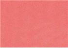 Sennelier Soft Pastels - Coral 923