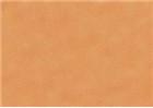 Sennelier Soft Pastels - Venetian Red 94
