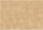 Sennelier Soft Pastels - Cassel Earth 416