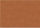 Sennelier Soft Pastels - Van Dyck Brown 438