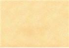 Sennelier Soft Pastels - Brown Ochre 126