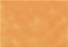 Sennelier Soft Pastels - Flesh Ochre 18