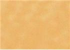 Sennelier Soft Pastels - Flesh Ochre 19