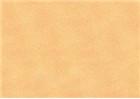 Sennelier Soft Pastels - Gamboge 371