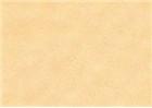 Sennelier Soft Pastels - Gamboge 372