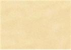 Sennelier Soft Pastels - Gamboge 374
