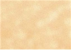 Sennelier Soft Pastels - Golden Ochre 131