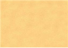 Sennelier Soft Pastels - Yellow Ochre 116