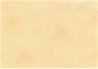 Sennelier Soft Pastels - Yellow Ochre 117