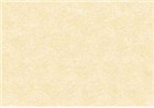 Sennelier Soft Pastels - Yellow Ochre 119