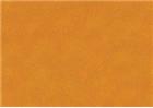 Sennelier Soft Pastels - Cadmium Yellow Orange 196