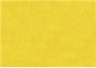 Sennelier Soft Pastels - Cadmium Yellow Deep 612