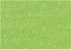 Sennelier Soft Pastels - Baryte Green 762