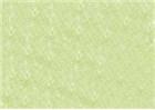 Sennelier Soft Pastels - Baryte Green 763