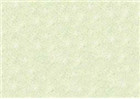 Sennelier Soft Pastels - Baryte Green 764