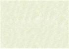 Sennelier Soft Pastels - Baryte Green 765