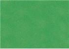 Sennelier Soft Pastels - Lawn Green 148