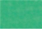 Sennelier Soft Pastels - Lawn Green 150