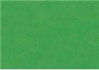 Sennelier Soft Pastels - Cinereous Green 347
