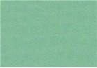 Sennelier Soft Pastels - Cinereous Green 349