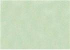 Sennelier Soft Pastels - Cinereous Green 351