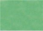 Sennelier Soft Pastels - Viridian 256