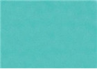 Sennelier Soft Pastels - Turquoise Green 724
