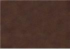 Sennelier Soft Pastels - Forest Green 911