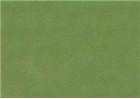 Sennelier Soft Pastels - Forest Green 915