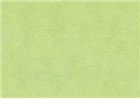 Sennelier Soft Pastels - Forest Green 916