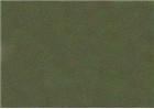 Sennelier Soft Pastels - Leaf Green 199