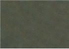Sennelier Soft Pastels - Leaf Green 200